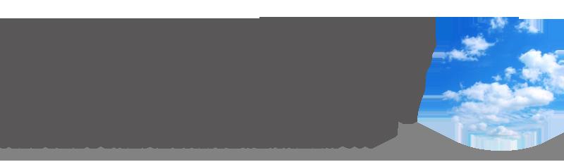 石粒付鋼板屋根材 SKY Metal Roof