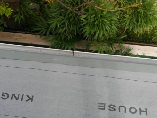 リフォーム施工中下屋根重ね葺き工事【44】横須賀市衣笠栄町S様