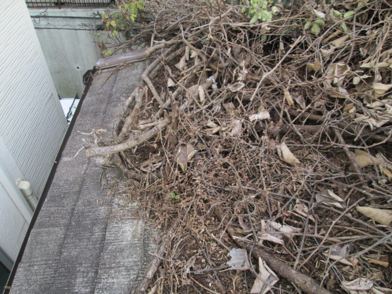 施工前屋根重ね葺き工事、植栽伐採工事【228】